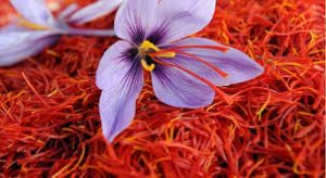 زعفران دم کرده