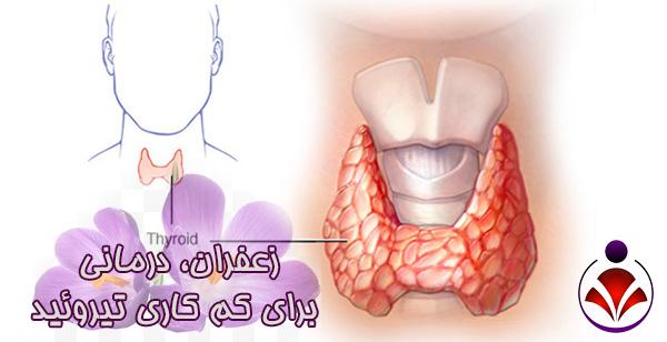 زعفران، درمانی برای کم کاری تیروئید