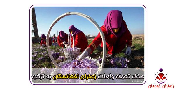 حذف تعرفه واردات زعفران افغانستان به ترکیه